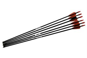 "Picture of Barnett Junior Archery Arrows 26"" Pack of 6"
